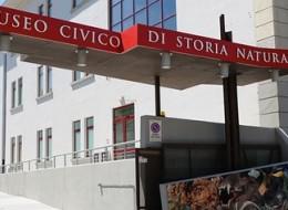 """MUSEO CIVICO DI STORIA NATURALE """"SILVIA ZENARI"""""""